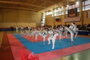 19-ноября-2011.-Фестиваль-Боевых-Искусств-Спартак-6